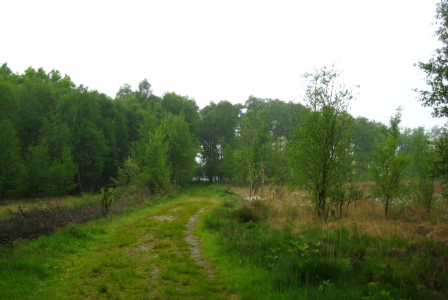 Haaksbergerveen